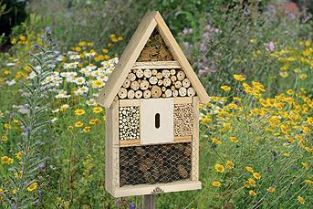 Una casa per gli insetti / di rachele z. cecchini