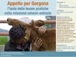 Appello Gorgona.immagine