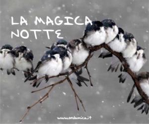la-magica-notte