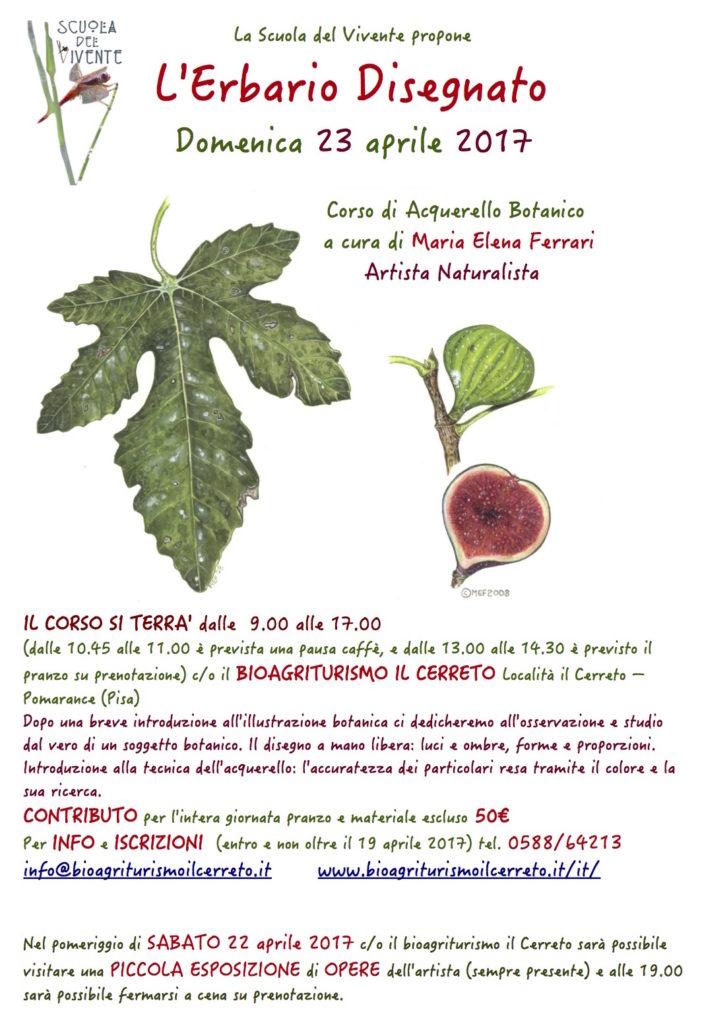 Disegno naturalistico_locandina Cerreto