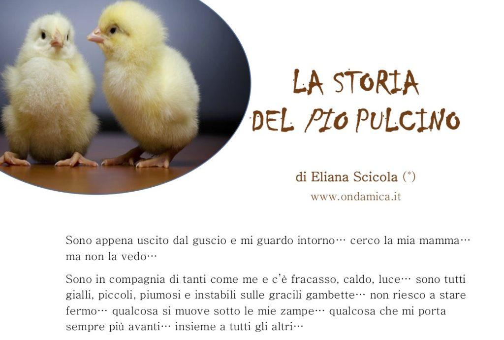 STORIA DEL PIO PULCINO_1 pag
