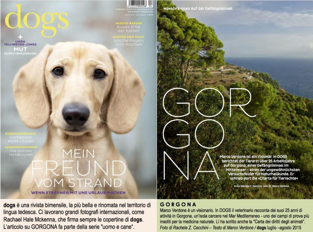 Dogs_GORGONA_lug_ago2015